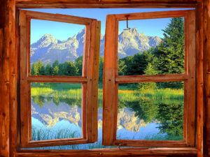 finestralberomagico